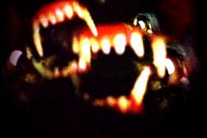 schluss-freak-heller_1